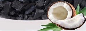 Ugol' aktivirovannyj kokosovy-CarboTech DGK 12x40